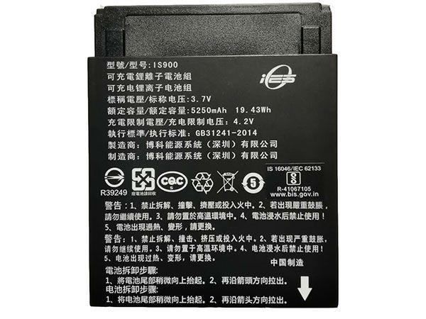 IS900